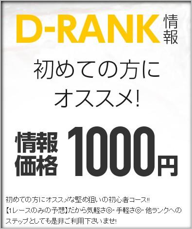 Dランク情報